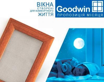 Программа «Предложение месяца» от Goodwin набирает обороты
